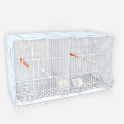 Cage d'élevage canaris
