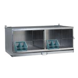 Cage d'élevage pour pigeons